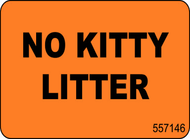 No Kitty Litter