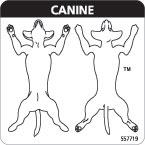 veterinary practice exam consent labels vetrimark. Black Bedroom Furniture Sets. Home Design Ideas