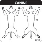 Canine Diagram