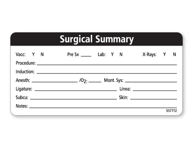 Surgical Summary